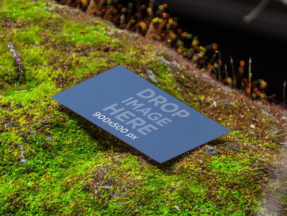 Business Card In The Nature 5678
