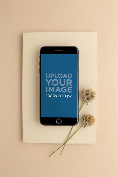 Space Gray iPhone Mockup on a Beige Cardboard with Dried Flowers 22016