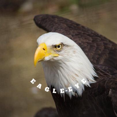 Eagle PopSocket Designer 682d