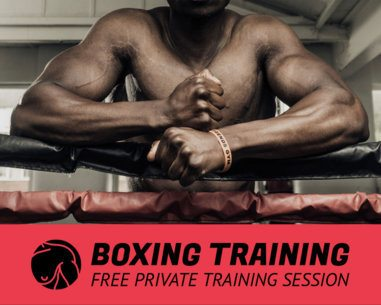 Vinyl Banner Template for Private Boxing Sessions 791e