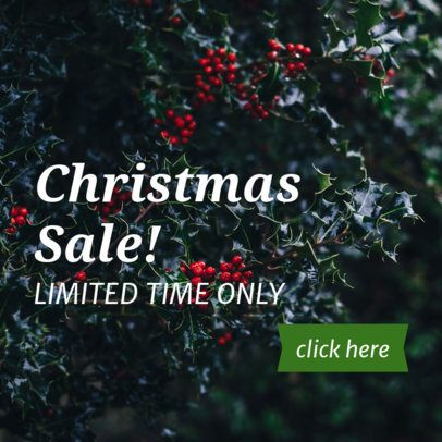Banner Maker for a Limited Christmas Sale16638b