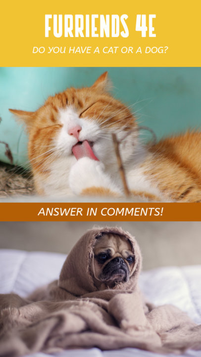 Instagram Story Maker for a This or That Questionnaire of Cats vs Dogs 950d