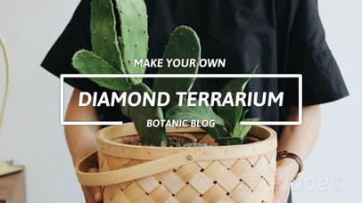 Slideshow Maker for a Step by Step Tutorial on Terrariums 1011