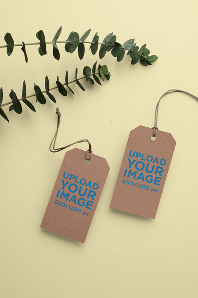 Mockup of Two Cardboard Brand Tags 27638
