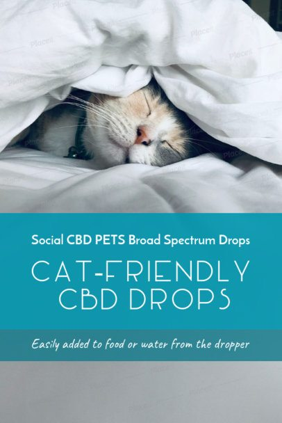 Pinterest Pin Template for a Post on CBD for Animals 2122c