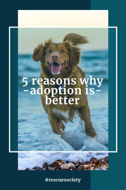 Pinterest Pin Template for Pet Adoption Awareness 2150c