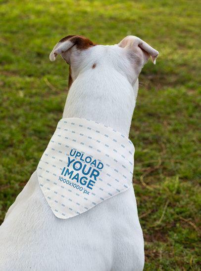 Mockup of a White Dog Wearing a Sublimated Bandana at the Park 33281