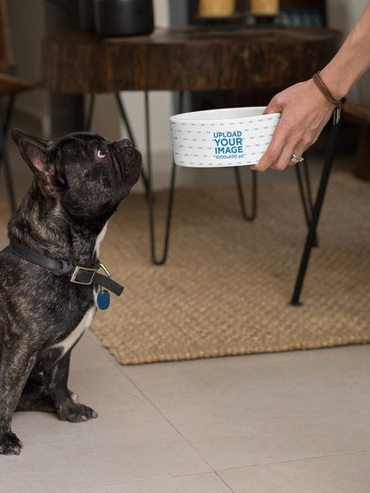 Dog Bowl Mockup Featuring a Woman Feeding Her Dog 33267
