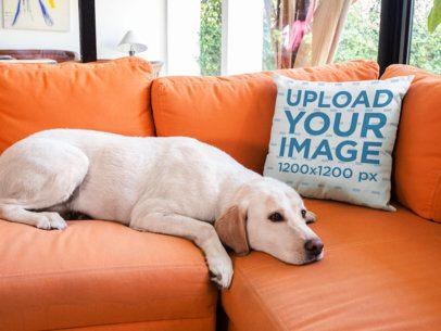 Pillow Mockup on an Orange Sofa Near a Labrador Dog a14927